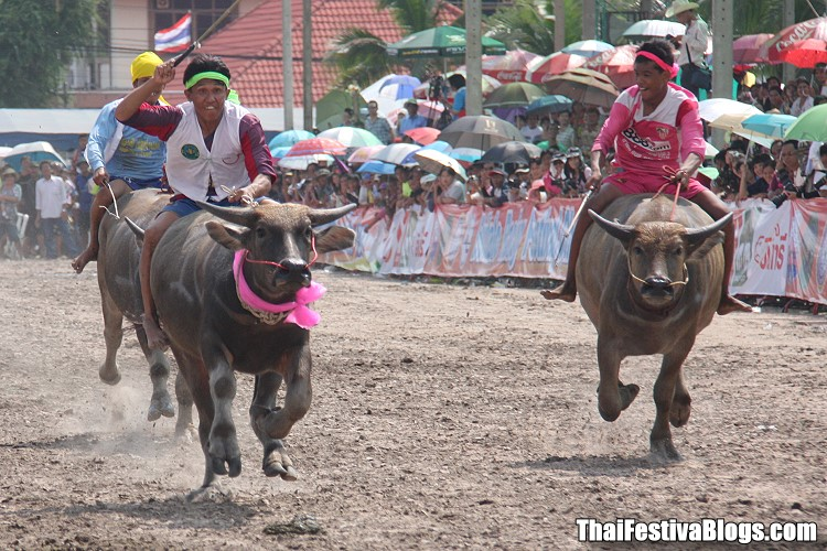 Chonburi Buffalo Racing